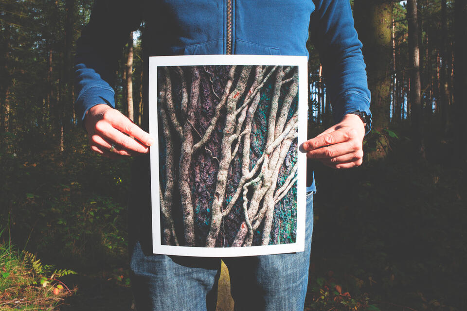 Man holding a photo of trees