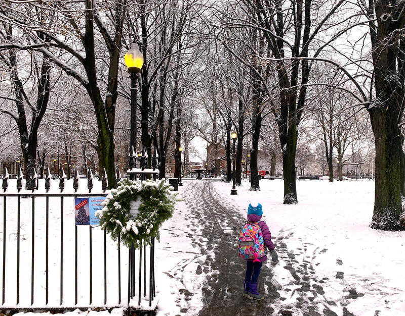 view of Franklin Park in Snow