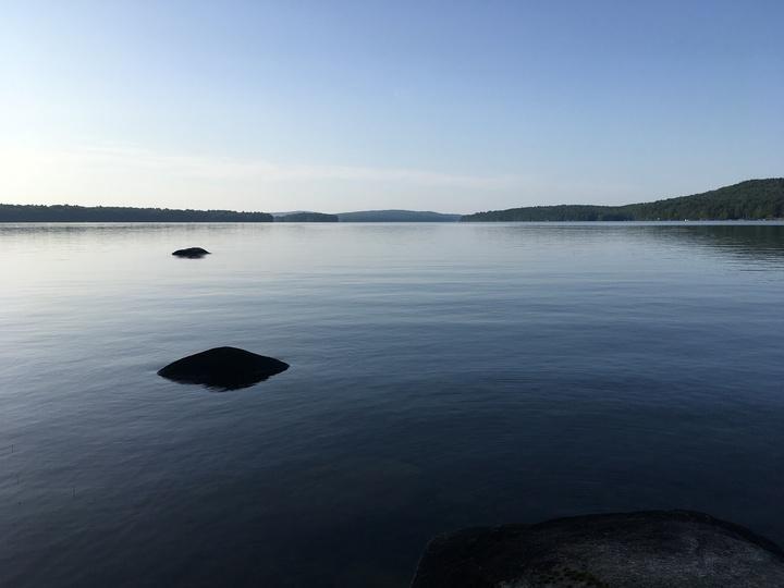 Calm summer lake scene